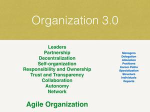 Agile Organization - organization 3.0