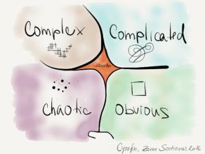 Cynefin framework - Complexity