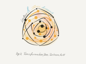 Agile Transformation disconnect